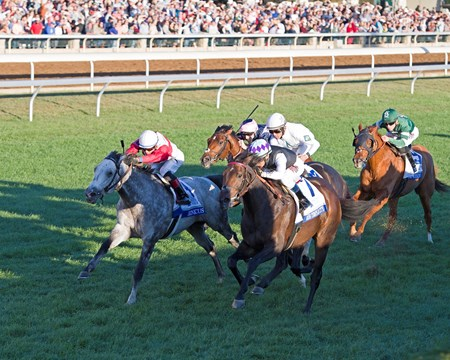 Miss Temple City with Edgar Prado up wins The 31st Running of The Shadwell Turf Mile (gr. 1) at Keeneland on , Saturday Oct. 8, 2016  in Lexington, Ky.