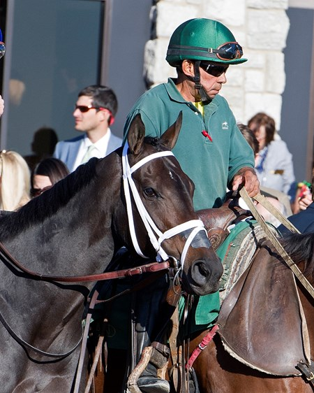 Tepin before finishing second to Photo Call in the 2016 First Lady
