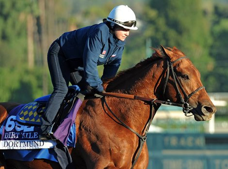 Sherman O Neill Welcome Shah Horses Bloodhorse