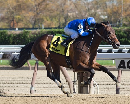 Hemsworth wins the 2016 Nashua Stakes