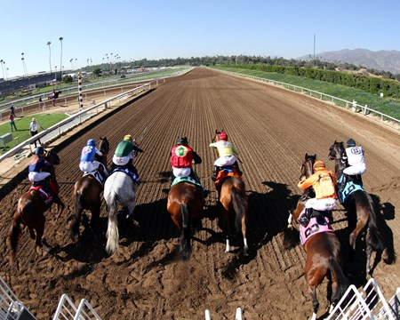 The start of the Breeders' Cup Sprint (GI) at Santa Anita on November 5, 2016.