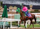 Nuovo Record to Race at Del Mar