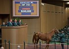 Hip 1751 Moonlight Sky from Denali Stud is bought for $240,000 by Kern Thoroughbreds