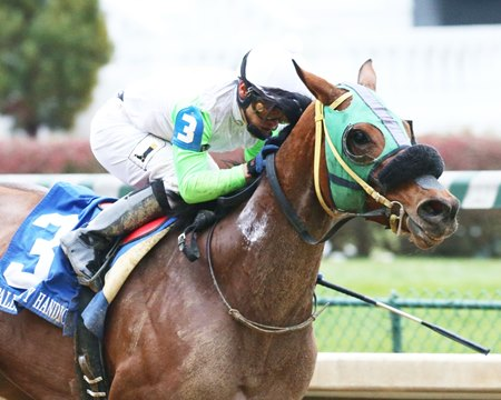 Lady Fog Horn wins the 2016 Falls City Handicap