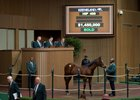 Hip 408, a colt by War Front, brought $1.45 million