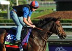Miss Temple City is likely to make her seasonal debut during the Keeneland spring meet
