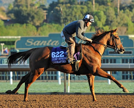 November 2, 2016: Undrafted at Santa Anita Tuesday morning.