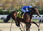 Hemsworth wins the Nashua Stakes