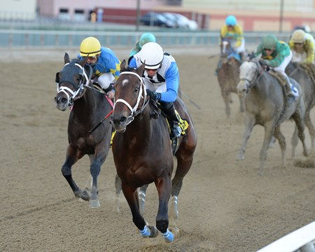 Sticksstatelydude wins the 2016 Discovery Stakes