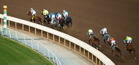 The field of horses compete in the Breeders Cup Classic at Santa Anita, Saturday, November 5, 2016.