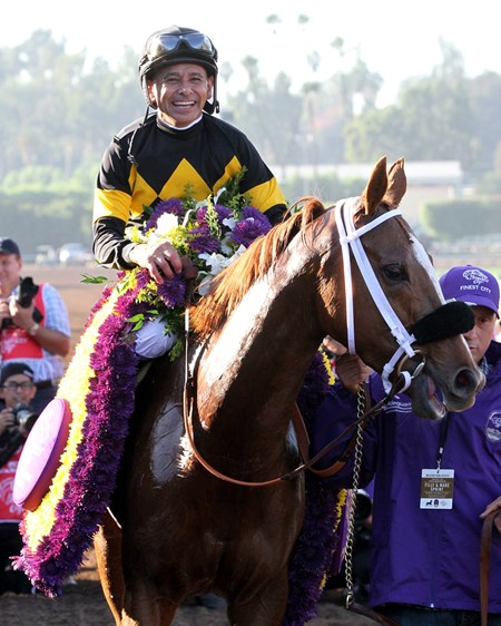 Finest City with Mike Smith after winning the Breeders' Cup Filly & Mare Sprint at Santa Anita on November 5, 2016.