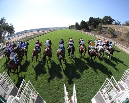 The start of the Breeders' Cup Turf Sprint (GI) at Santa Anita on November 5, 2016.
