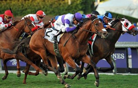 Frank Conversation Lights Up Twilight Derby Bloodhorse