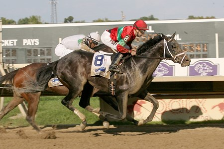 Protonico #8 with Joe Bravo riding wins the 2014 Smarty Jones Stakes at Parx Racing in Bensalem.
