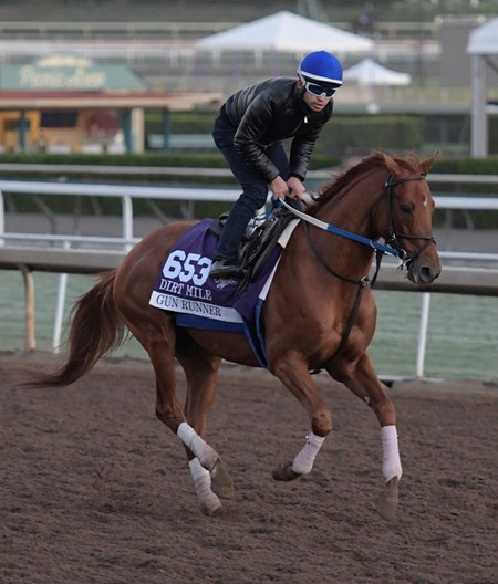 Gun Runner gallops at Santa Anita Nov. 2, 2016 in preparation for his appearance in the Breeders' Cup in Arcadia, California.