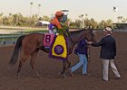 Richard Mandella greets Beholder after her Breeders' Cup Distaff victory