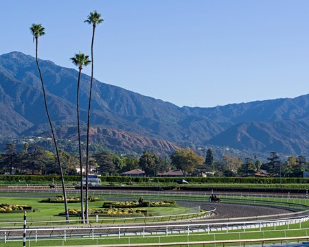 Santa Anita Park's all-sources handle for its 103-day racing season showed a 2.5% increase according to track officials.