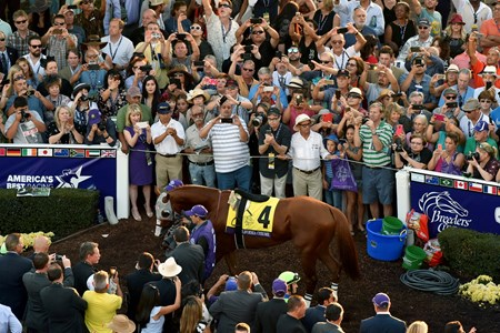 Fans photograph California Chrome before the Breeders Cup Classic at Santa Anita, Saturday, November 5, 2016.