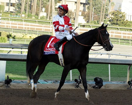 Mike Smith and Songbird finish second in the Longines Breeders' Cup Distaff Nov. 4 at Santa Anita Park