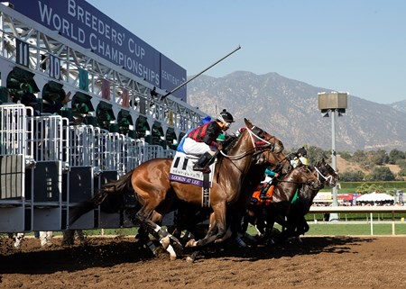 The field leaving the starting gate in the Sentient Jet Breeders' Cup Juvenile at Santa Anita on 11/5/16.