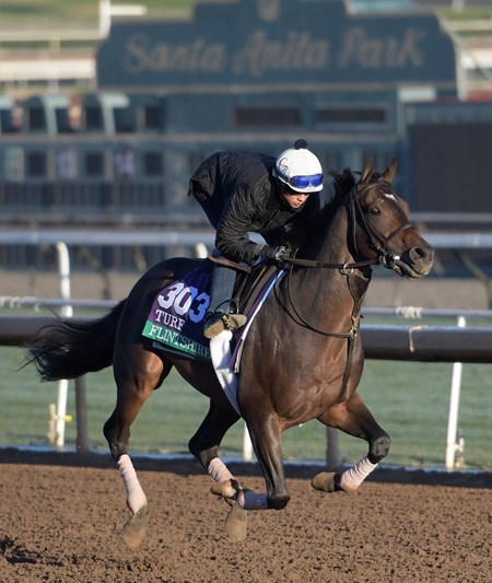 Flintshire gallops at Santa Anita Nov. 2, 2016 in preparation for his appearance in the Breeders' Cup in Arcadia, California.