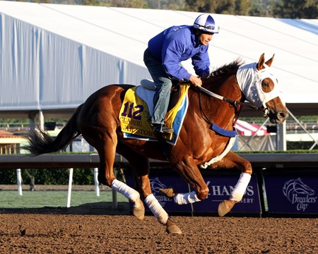 War Story on the track at Santa Anita on November 2, 2016.