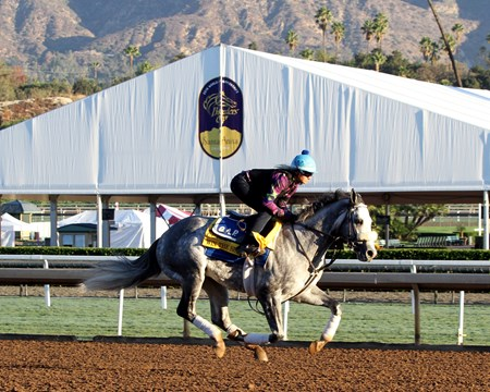 Win the Space on the track at Santa Anita on November 2, 2016.