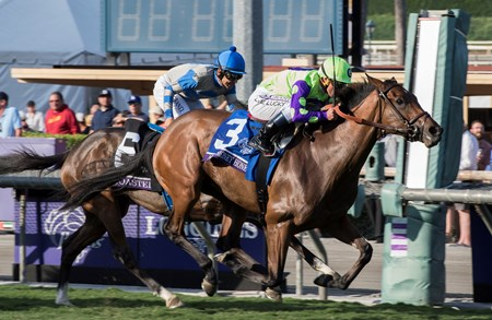 New Money Honey, with Javier Castellano aboard wins the Juvenile Fillies Turf (gr. I) at Santa Anita on Nov. 4, 2016, in Arcadia, Calif.