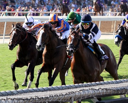 Oscar Performance with Jose Ortiz win the Breeders' Cup Juvenile Turf (GI) at Santa Anita on November 4, 2016.