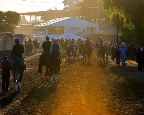 Santa Anita To Close Main Track To Evaluate Safety