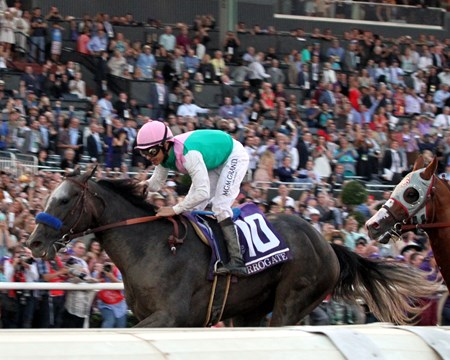 Arrogate with Mike Smith win the Breeders' Cup Classic at Santa Anita Park on November 5, 2016.