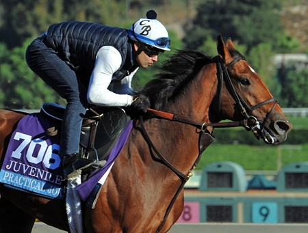 Practical Joke at Santa Anita