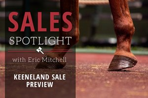 Keeneland November Sale Preview