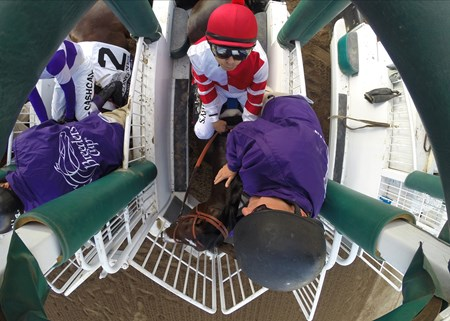 Songbird and Mike Smith in the starting gate before the Longines Breeders Cup Distaff at Santa Anita on 11/4/16