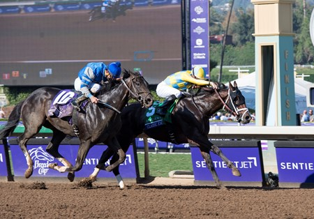Classic Empire, Julien Leparoux up, wins the Sentient Jet Juvenile (gr. I) at Santa Anita on Nov. 5, 2016, in Arcadia, California.