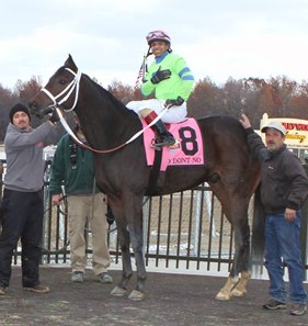 Loooch Racing Stables' Ohio Horse of the Year Mo Dont No