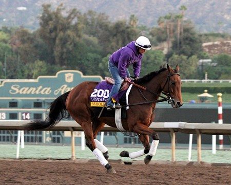 Beholder on the track at Santa Anita on November 2, 2016.