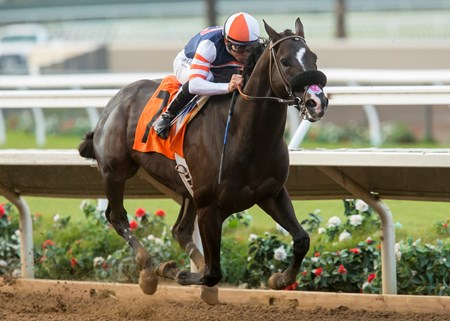 Midnight Storm wins the 2016 Native Diver Stakes (GII) at Del Mar Thoroughbred Club