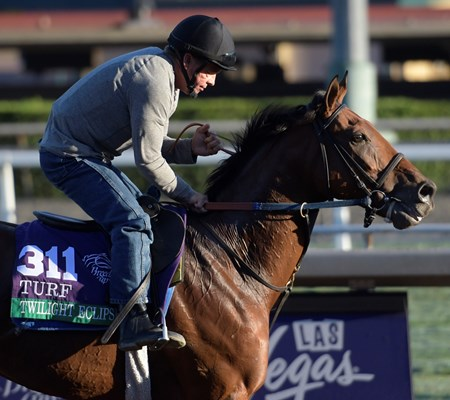 Twilight Eclipse is out for a gallop at Santa Anita Nov. 2, 2016 in preparation for his appearance in the Breeders' Cup in Arcadia, California.