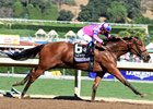 Champagne Room Ready for Las Virgenes Season Debut