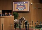 Conquest Serenade Sells for $800,000