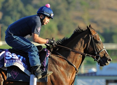 Haveyougoneaway at Santa Anita Tuesday morning...