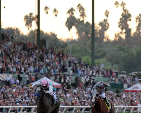 Arrogate (#10) with Mike Smith beat California Chrome (#4) with Victor Espinoza to win the Breeders' Cup Classic (GI) at Santa Anita on November 5, 2016.