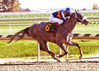 El Areeb in his maiden win in October at Laurel Park.