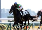 Queens Ring won last year's Queen Elizabeth II Cup and looks to defend her title at Kyoto
