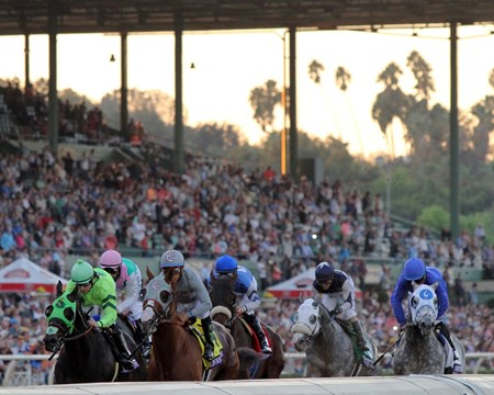 The field for the Breeders' Cup Classic (GI) goes by the grandstand for the first time at Santa Anita on November 5, 2016.