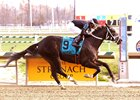 Sharp Azteca wins last year's City of Laurel Stakes at Laurel Park