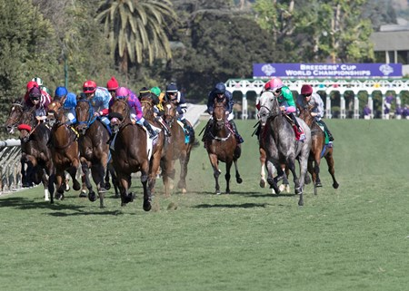 The field in the Breeders' Cup Turf Sprint at Santa Anita on 11/5/16.