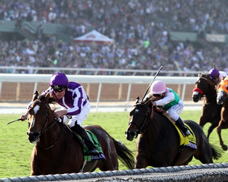 Highland Reel with Seamus Heffernan win the Breeders' Cup Turf (GI) at Santa Anita on November 5, 2016.