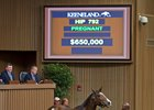 Easy Feeling sells for $650,000 at Keeneland November.